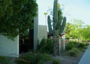 Saguaro Christian Church
