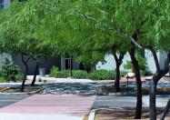 University of Arizona Technical Park
